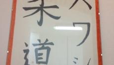 Havasi Judo